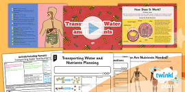 science animals including humans year 6 unit assessment pack