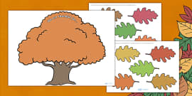 Thanksgiving Tree Display Activity