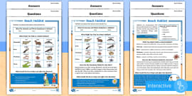 * NEW * KS1 Beach Habitat  Differentiated Go Respond Activity Sheets