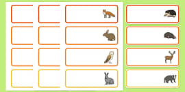 Editable Drawer - Peg - Name Labels (Woodland Animals)