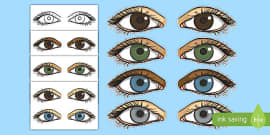 Eyes Display Cut Outs