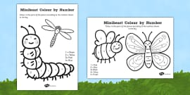 Minibeast Colour by Number