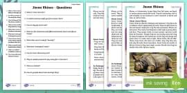 Year 2 Javan Rhinos Differentiated Reading Comprehension Activity