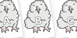 A-Z Alphabet on Baby Owls