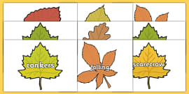 Autumn Topic Words on Leaves