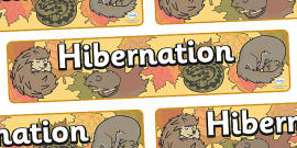 Hibernation Display Banner