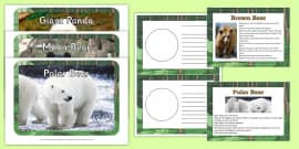 Facts about Bears EYFS Resource Pack