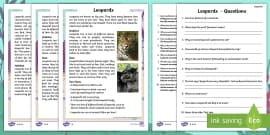 Year 2 Leopards Differentiated Reading Comprehension Activity