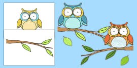 Owl Themed Wall Decals