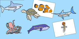 Days of the Week on Sea Creatures (Under the Sea)