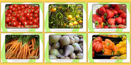 Harvest Fruit and Vegetable Display Photos
