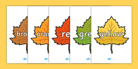 Colour Words on Autumn Leaves