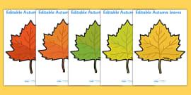 Editable Autumn Leaves