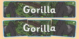 Gorilla Display Banner