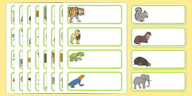 Animal Themed Drawer Peg Name Labels Editable