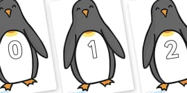 Numbers 0-50 on Penguins