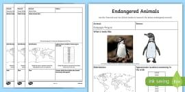 Endangered Animal Fact File Research Activity Sheet