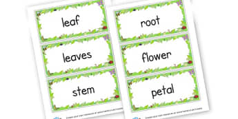 plants words - Plants & Growth Keywords Primary Resources, flowers, growing, tree