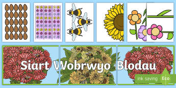 Pecyn Arddangosfa Wobrwyo Blodau - Adnoddau Arddangos, General Displays, welsh displays, welsh display, new display, maths, english, re