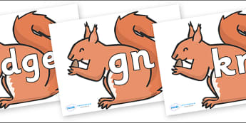Silent Letters on Red Squirrels - Silent Letters, silent letter, letter blend, consonant, consonants, digraph, trigraph, A-Z letters, literacy, alphabet, letters, alternative sounds