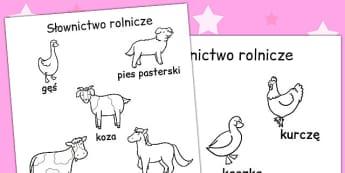 Kolorowanka Ferma ze slowami po polsku - przedszkole, Polish