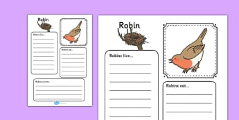 Robin Factfile Worksheet - robin, fact file, factfile, christmas, bird