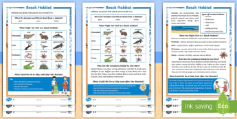 KS1 Beach Habitat Differentiated Reading Comprehension Activity - Seaside, Who, Lives, Plants, Animals