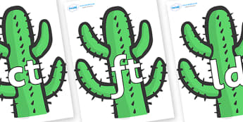 Final Letter Blends on Cactus - Final Letters, final letter, letter blend, letter blends, consonant, consonants, digraph, trigraph, literacy, alphabet, letters, foundation stage literacy