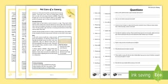 KS2 Pet Care of a Canary Differentiated Reading Comprehension Activity - KS2 National Pet Month (April 2017), pet care, looking after a bird, canary, canaries, birds, needs