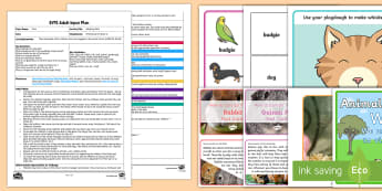EYFS Adopting Pets Adult Input Plan and Resource Pack - EYFS Pets, Animals, National Pet Month, rescue centre, adopting pets, pet, re-home, love, care for,