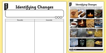 Differentiated Identifying Changes Activity Sheet - irreversible, reaction, reversible, chemical, physical, worksheet