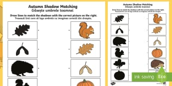 Autumn Shadow Matching Activity Sheet English/Romanian - Autumn Shadow Matching Worksheet - seasons, weather, shadows, EAL