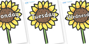 Days of the Week on Sunflowers - Days of the Week, Weeks poster, week, display, poster, frieze, Days, Day, Monday, Tuesday, Wednesday, Thursday, Friday, Saturday, Sunday