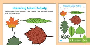 Spring - Leaf Measurement Activity - Measurement, Spring, Maths, ruler, length