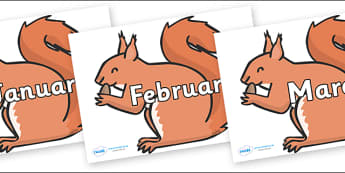 Months of the Year on Red Squirrels - Months of the Year, Months poster, Months display, display, poster, frieze, Months, month, January, February, March, April, May, June, July, August, September