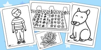 Oliver's Vegetables Colouring Sheets - Oliver's vegetables, colour