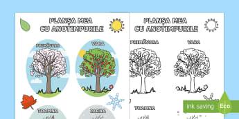 Planșa mea cu cele patru anotimpuri - planșe, anotimpuri, română, materiale, vremea, activități, științe, stiinte, anotimpurile, ce