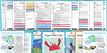 EYFS Under the Sea Adult Input Planning Pack - eyfs, planning