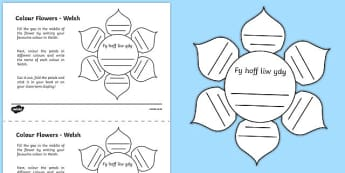 MFL Welsh Colour Flowers Activity Sheet, worksheet