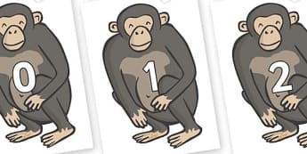 Numbers 0-100 on Chimps - 0-100, foundation stage numeracy, Number recognition, Number flashcards, counting, number frieze, Display numbers, number posters