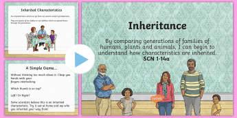 Inheritance PowerPoint - CfE Science, science week, Edinburgh Science Festival, Glasgow Science Festival, Scottish Science Fe