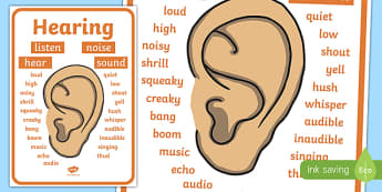 Hearing Vocabulary Display Poster
