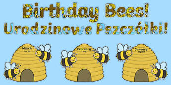 Birthday Bees Display Pack Polish Translation - polish, Signs and Labels, bees, insects, honey, birthdays