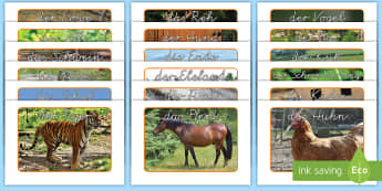 Tiere Poster für die Klassenraumgestaltung - Tiere, Nutztiere, Waldtiere, Haustiere, Wildtiere, Zootiere, Poster, Bilder, Sachkunde, German