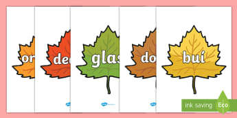 Colour Words on Autumn Leaves Display Posters - an fómhar, seasons, duilleoga, aimsir, séasur, ,Irish