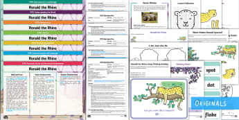 EYFS Ronald the Rhino Bumper Planning Pack  - Early years planning, Plan, continuous provision, enhancements, adult led, Twinkl originals, fiction