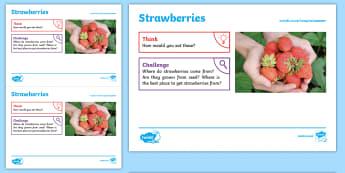 Summer: Strawberries KS1 Exploration Sheet - summer, strawberries, fruit, sunshine, seasonal, KS1, Imagine (KS1)