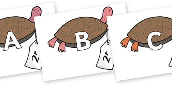A-Z Alphabet on Terrapin to Support Teaching on The Great Pet Sale - A-Z, A4, display, Alphabet frieze, Display letters, Letter posters, A-Z letters, Alphabet flashcards