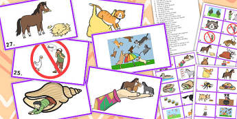 Animal Idiom Picture Cards - animal, idiom, picture, cards, sen