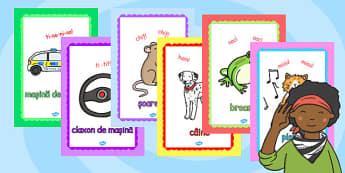 Sunetele din jurul nostru - Planșe - sunete, fizică, onomatopee, limba română, muzică, muzică și mișcare, materiale didactice, română, romana, material, material